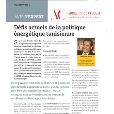 Jeune Afrique : Avis d'experts Défis actuels de la politique énergétique tunisienne