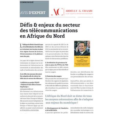 Jeune Afrique : Avis d'experts Défis & enjeux du secteur des télécommunications en Afrique du Nord